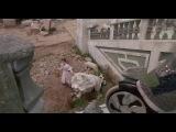 Развалины Изумрудного города и колесуны ( к\ф